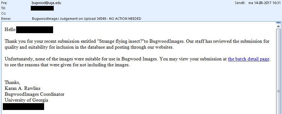 Bugwood insect image database email