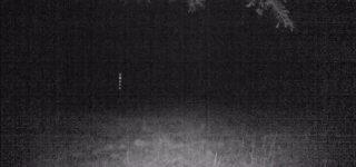 Strange lights in outdoor wildlife camera videos