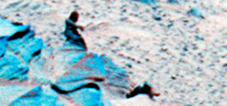 NASA image evidence of extraterrestrial life on Mars?