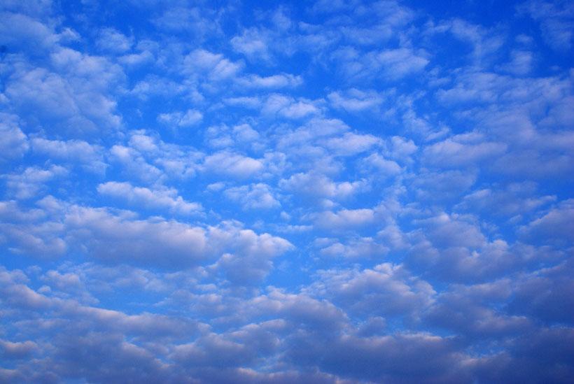 Altocumulus cloud type invading the sky (closeup)