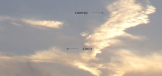 Aircraft contrail transforms into Cirrus cloud type