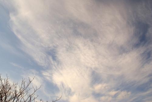Cirrocumulus clouds DSC06731