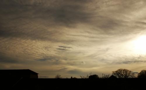 Altocumulus invading the sky DSC08648